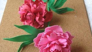 Цветы из фоамирана - пион. Мастер класс часть 1(Как сделать цветы пиона из фоамирана. Купить фоамиран Киев и доставка по Украине цены и..., 2015-05-06T13:47:09.000Z)