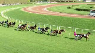 Vidéo de la course PMU PRIX DE MONS