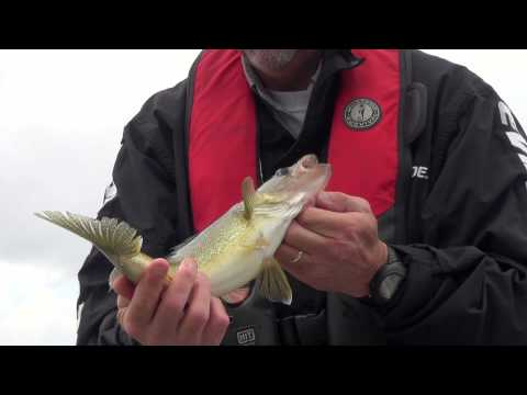 2014 Show #6: Walleye Fly-in Adventures with White River Air
