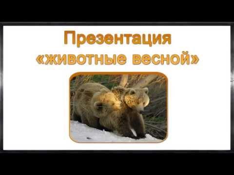 Презентация На тему Профессия агроном Выполнила
