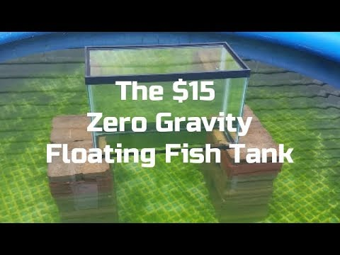 DIY $15 Floating Upside Down Zero Gravity Inverted Fish Tank For Pond Cheap And Easy Build