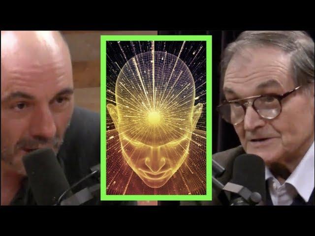 Joe Rogan - Mathematician on Trying to Measure Consciousness