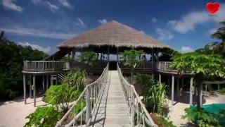 Шикарный тур на Мальдивы! Море впечатлений от тура на Мальдивы!