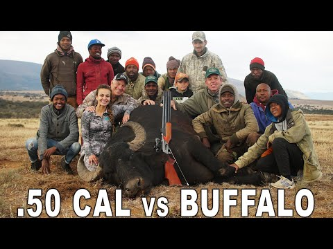 AIR GUN Water Buffalo Hunt