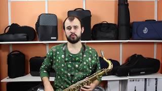 №14 Школа игры на саксофоне. Начало занятия.  Sax lessons. Beginning of class
