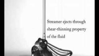 Leaping Shampoo