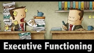 MIND MATTERS:  Executive Functioning