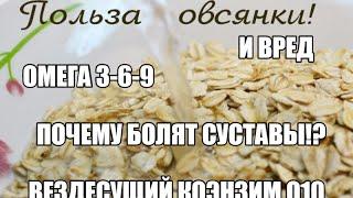 ПОЛЬЗА и ВРЕД ОВСЯНКИ, ОМЕГА 3-6-9, ПОЧЕМУ БОЛЯТ СУСТАВЫ, Коэнзин Q10