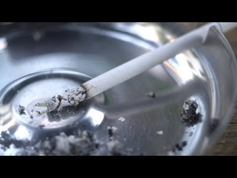The Effects Of Smoking On The Body |  Health Effects Caused By Smoking You Didn't Know About