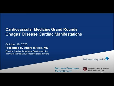Cardiac Manifestations Of Chagas Disease By Dr. Andre D'Avila (BIDMC)