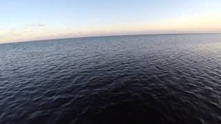 DJI Phantom II at Matheson Hammock Park & Marina
