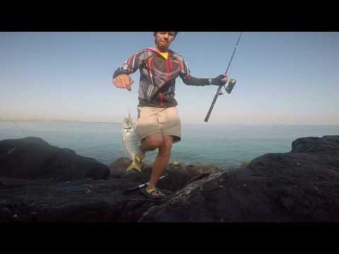 Shore Jigging: Blue Runner on Shore Flip Jig