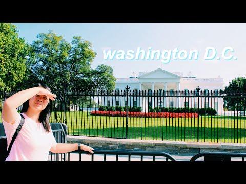 buzzbeyond of washington [DC] 💎