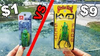 Cheap Frog vs. Expensive Frog -- Fishing Challenge