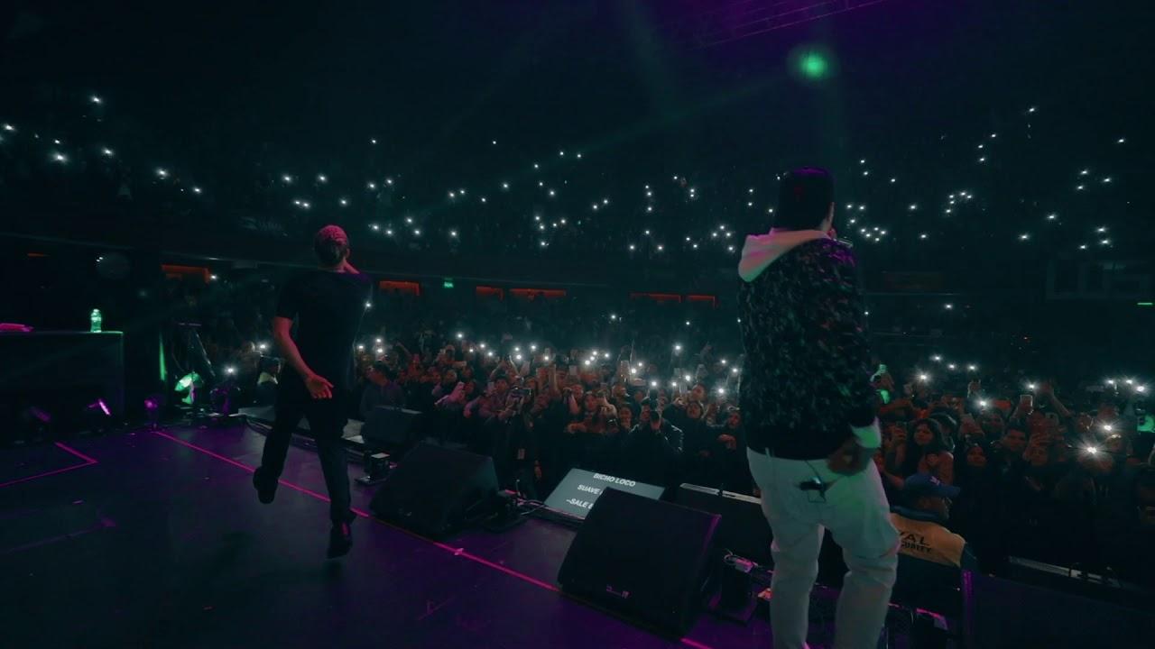 Bicho Loco Live en Chile - Ardilla, Noriel y El Alfa