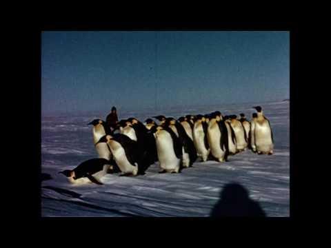 Halley Bay expedition film