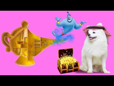 Cute Snowball Dog And Hugo Hamster Finding Treasure In Spirit Lamp Tree Maze
