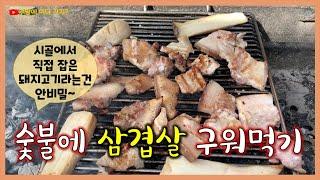 시골에서 직접 잡은 돼지고기 삼겹살 숯불바베큐