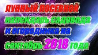 видео Лунный календарь огородника  на октябрь 2018