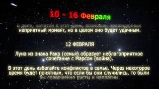 Секрет зодиак гороскоп по годам