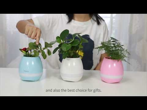 Tokqi Flowerpot Colorful LED Night Light Smart Touch Music Plant Lamp
