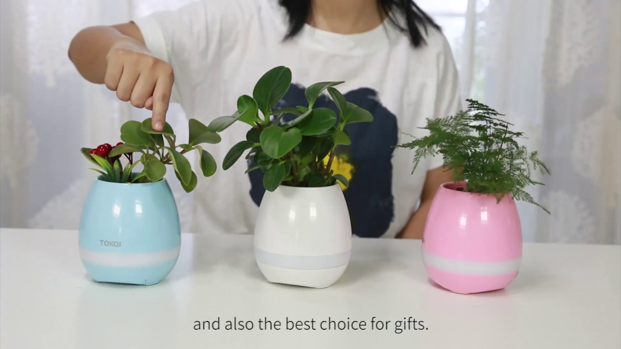 tokqi flowerpot colorful led night light smart touch music plant