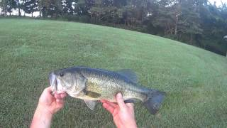Indiana Farm Bass Fishing