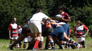 seven rugby fanaticos xnd