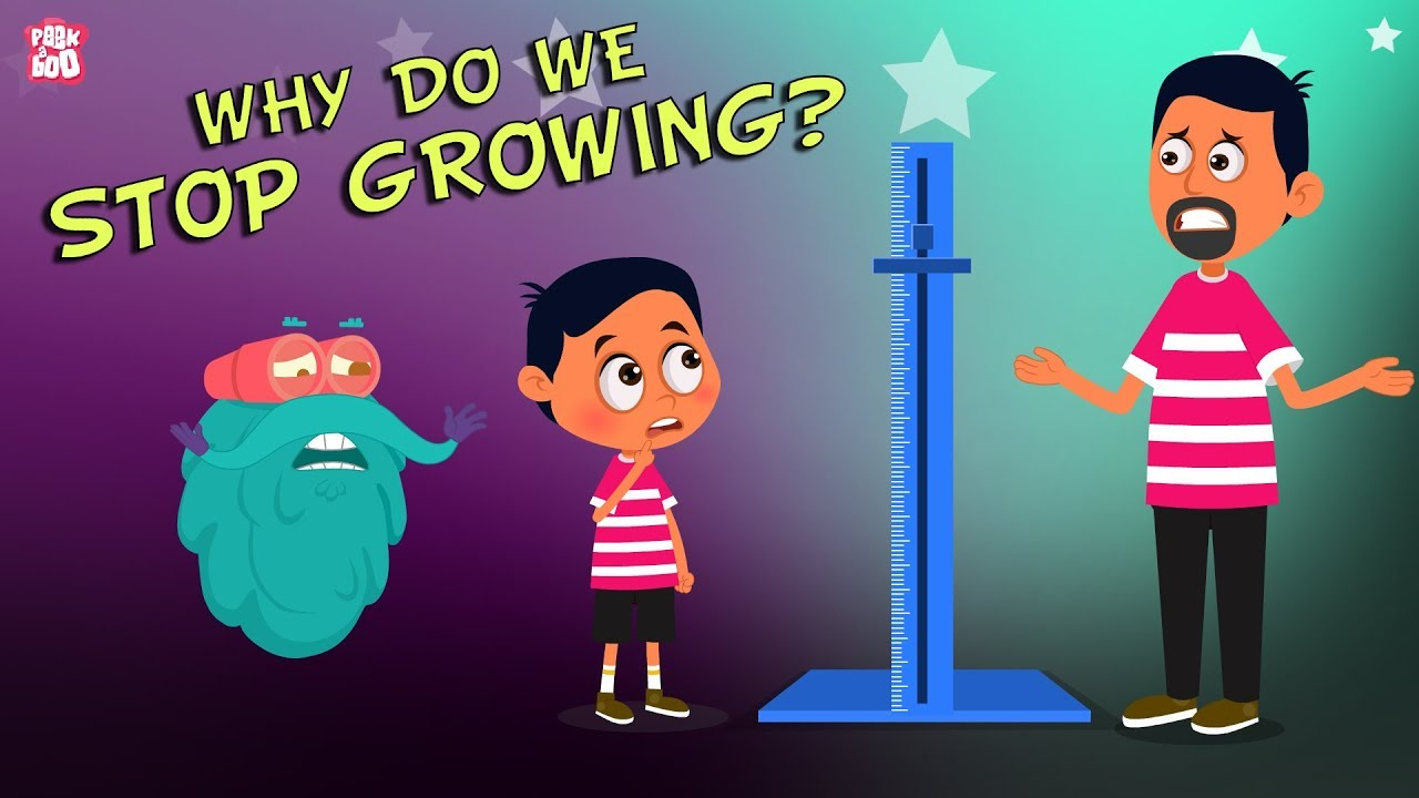 Download Why Do We Stop Growing? The Dr. Binocs Show | Best Learning Videos For Kids | Peekaboo Kidz