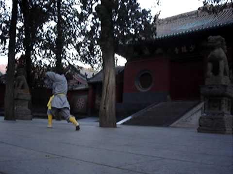 Shaolin Kung Fu - My Student Yang Xin Hui Practising (Pao Quan)