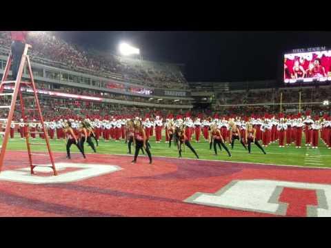 2016 University of Houston Cougar Dolls