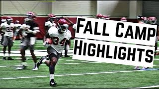 Alabama Crimson Tide Football: Watch running backs Damien Harris and Josh Jacobs