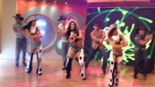 El caballito de palo -  Grupo Latinos