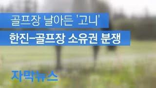 [자막뉴스] 골프장에 날아든 '고니'…한진-골프장 소유…