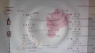 彩雲追月  - GUANGDONG FOLK ORCHESTRA 1961