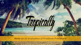Tropical House - Tuyển tập nhạc âu mỹ hay nhất