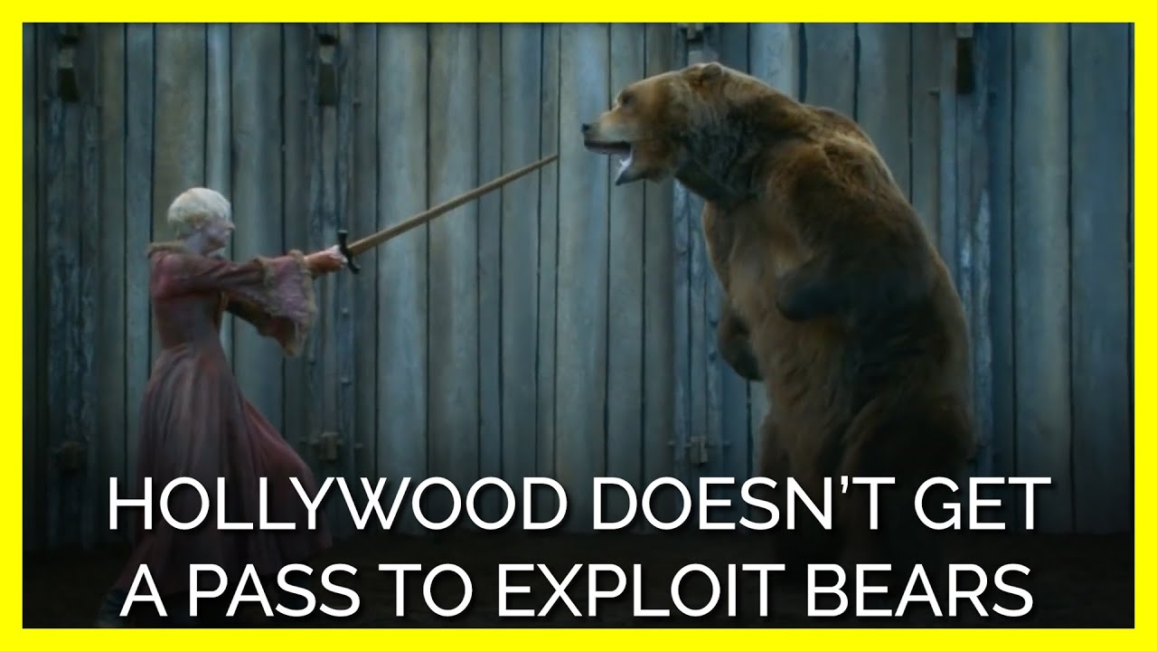 Hollywood Doesn't Get a Pass to Exploit Bears