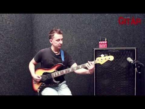 Palmer Uebertreiber basszustorzító - tesztelés Kolta Gergővel
