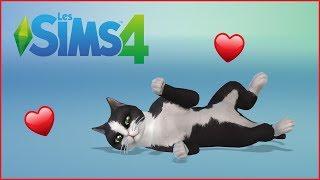 Live Sims - On retrouve Snapchaaaat, le plus chou de tous les chats !! thumbnail
