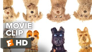 Isle of Dogs Movie Clip - Okay, It