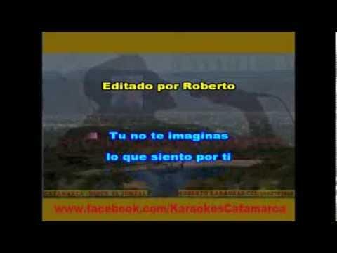 Karina   Hasta el fin del mundo  ( karaoke ) (PRODUCCIONES ROBERTO)