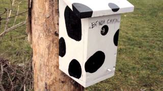 "A LOUD ""surprise"" awaits every geocacher at this amazing geocache!"
