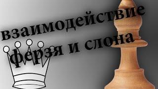 Уроки шахмат для начинающих. Взаимодействие ферзя и слона. Типовые матовые конструкции. Упражнения.