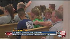 Animal abuse sentencing