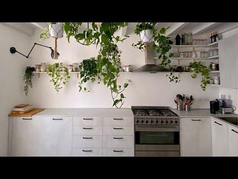 TOUR DELLA MIA CUCINA | Cucina Botanica | #Veganuary
