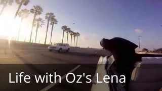 Gopro Life With Oz's Lena The Rottweiler & Blu In A Cadillac Beach Cruise