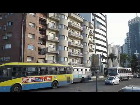 Montevideo City Bus Tour