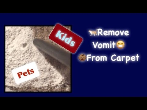 how to clean vomit out of carpet tips for kids and pets youtube. Black Bedroom Furniture Sets. Home Design Ideas