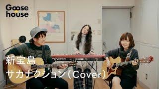 新宝島/サカナクション(Cover)