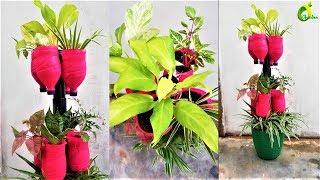 🍀❤plants arrangement in plastic bottles/reuse bottle planter idea //ORGANIC GARDEN 🍀❤